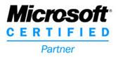 Microsoft_Partner_logo